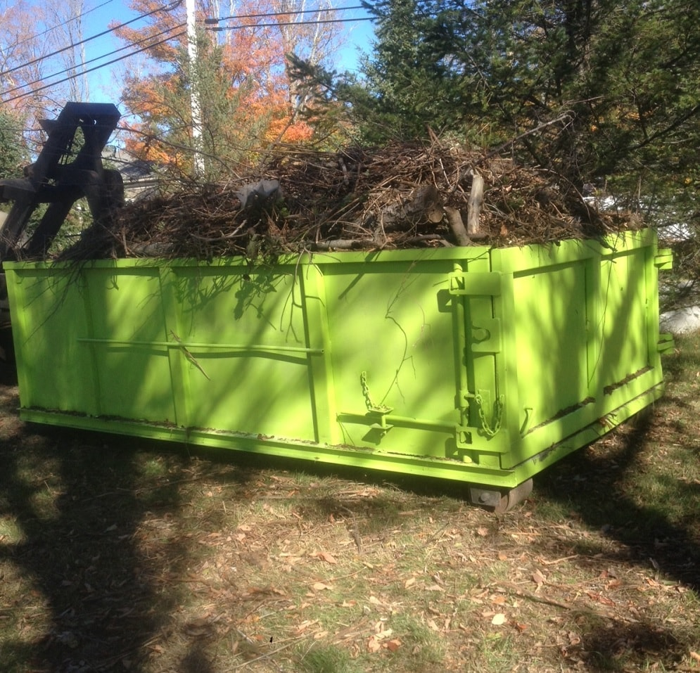 tree branches in a dumpster