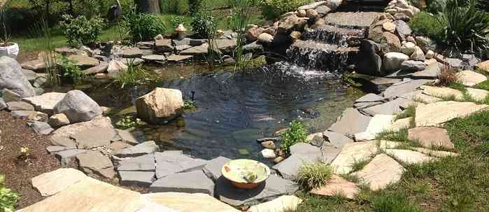 Custom Built Koi Pond with Rock Border